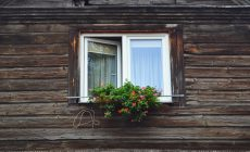 Вкарайте природата у дома